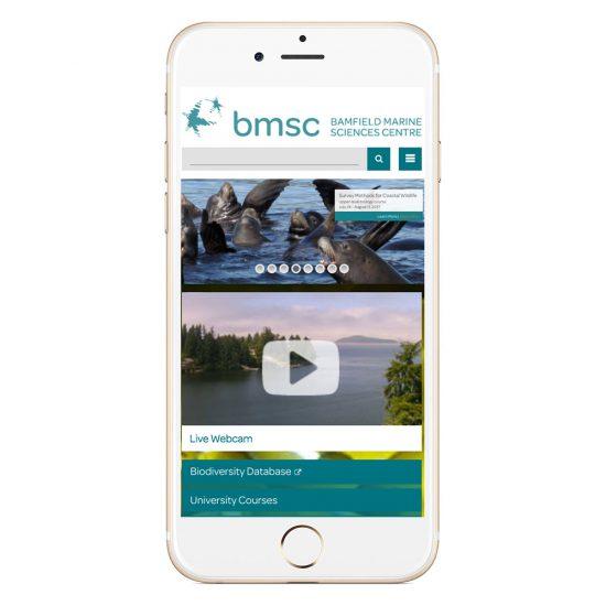 bmsc-1-portfolio-2017